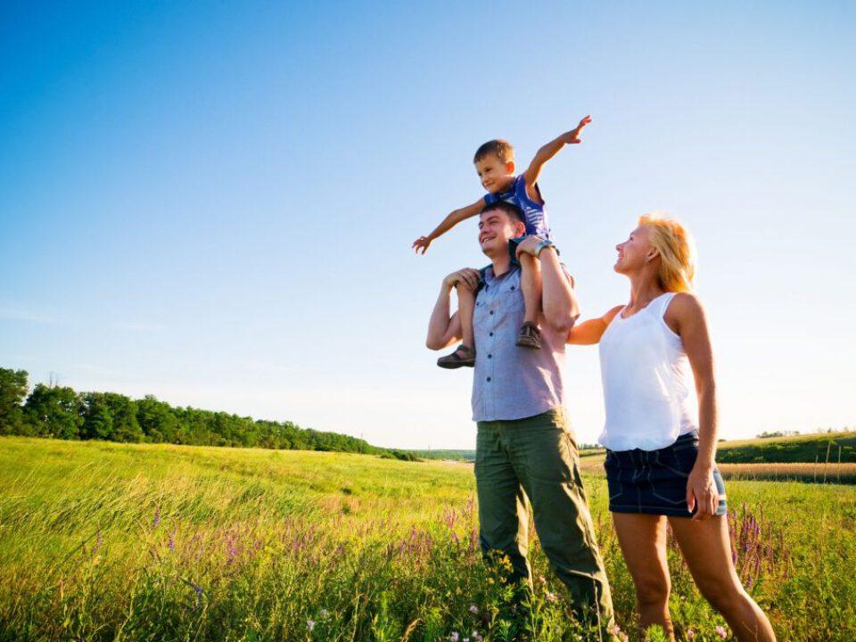 4320 Sayılı Ailenin Korunmasına Dair Kanunun ve Uygulamalarının Değerlendirilmesi Üzerine Bir Araştırma