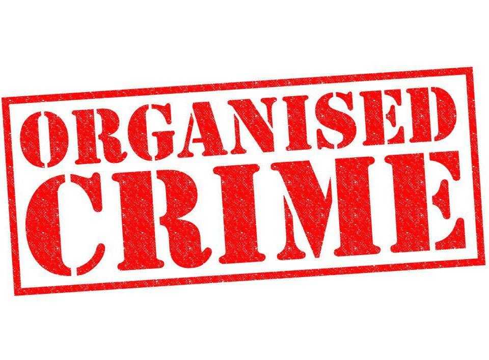 Organize Suç Örgütleri